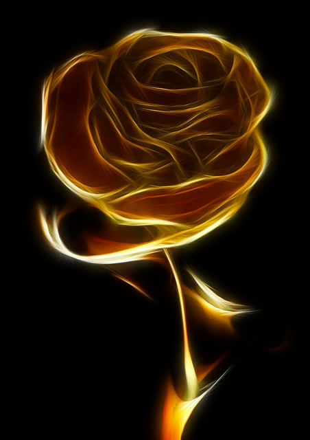 Rose Gold Jewelry Wardrobe